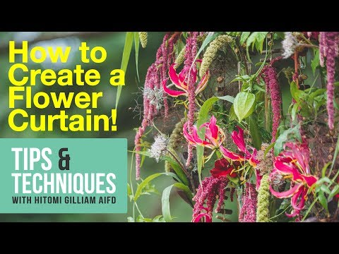HOW TO CREATE A FLOWER CURTAIN - TIPS & TECHNIQUES WITH HITOMI / Episode 005