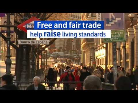 Why a free trade agreement?