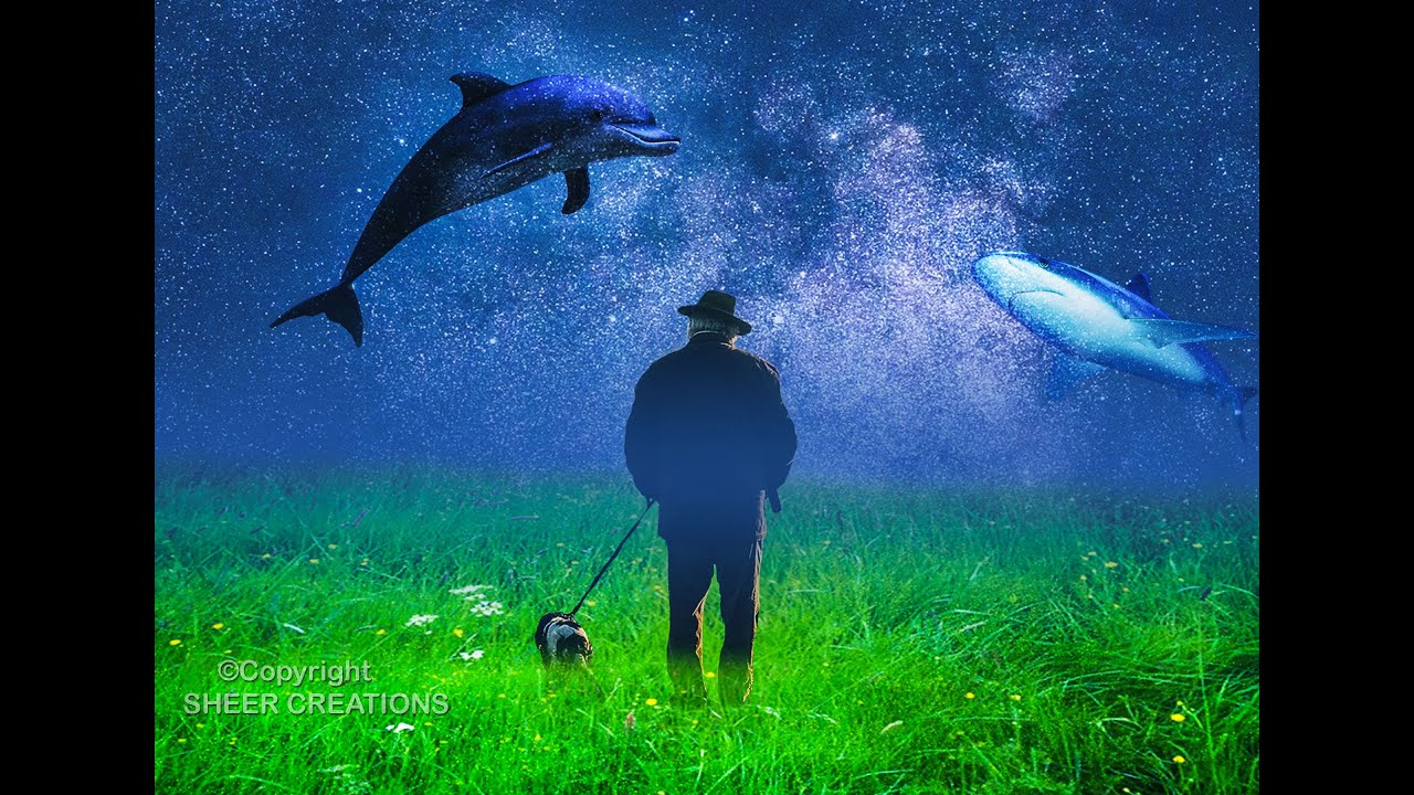 Fantasy Photoshop Manipulation Old Man With Dog Wallpaper Photo By Sheer Creations