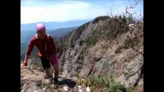 Border Terrier goes mountainbiking & mountainclimbing