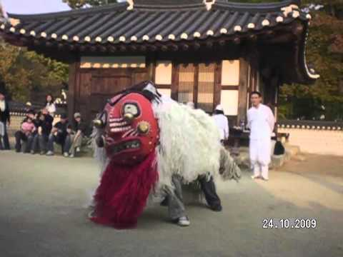 Lion Dance in Korea