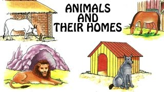 animals and their homes animal shelter for kids fun learn preschool learning videos for kids