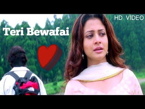 Teri Bewafai Ka Koi Gham Nahi Hai | Full Hd Video Song