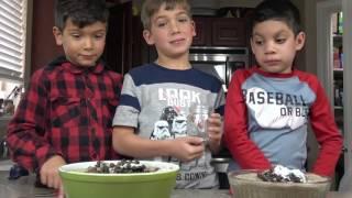 INSANE BLACK SNAKE EXPERIMENT   PUKE AGAIN!