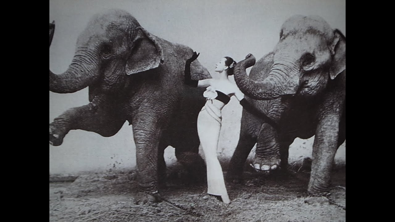 Richard Avedon 7 Images That Changed Fashion Photography