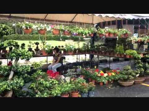 Penang Floral Festival 2010