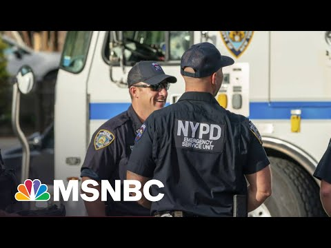 Bill Bratton On Cutting Crime, Restoring Order And His New Book | MSNBC