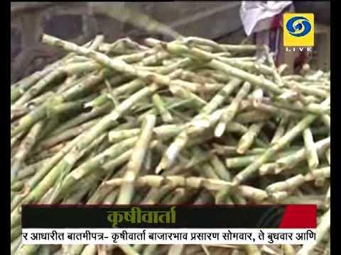 Krishivarta Bajarbhav - 04 June 2018 - कृषीवार्ता बाजारभाव