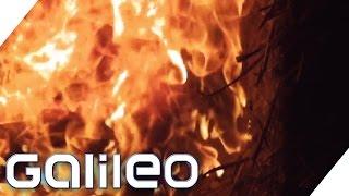 Schützt das Innenleben von Windeln vor Feuer? | Finde den Lügner | Galileo | ProSieben
