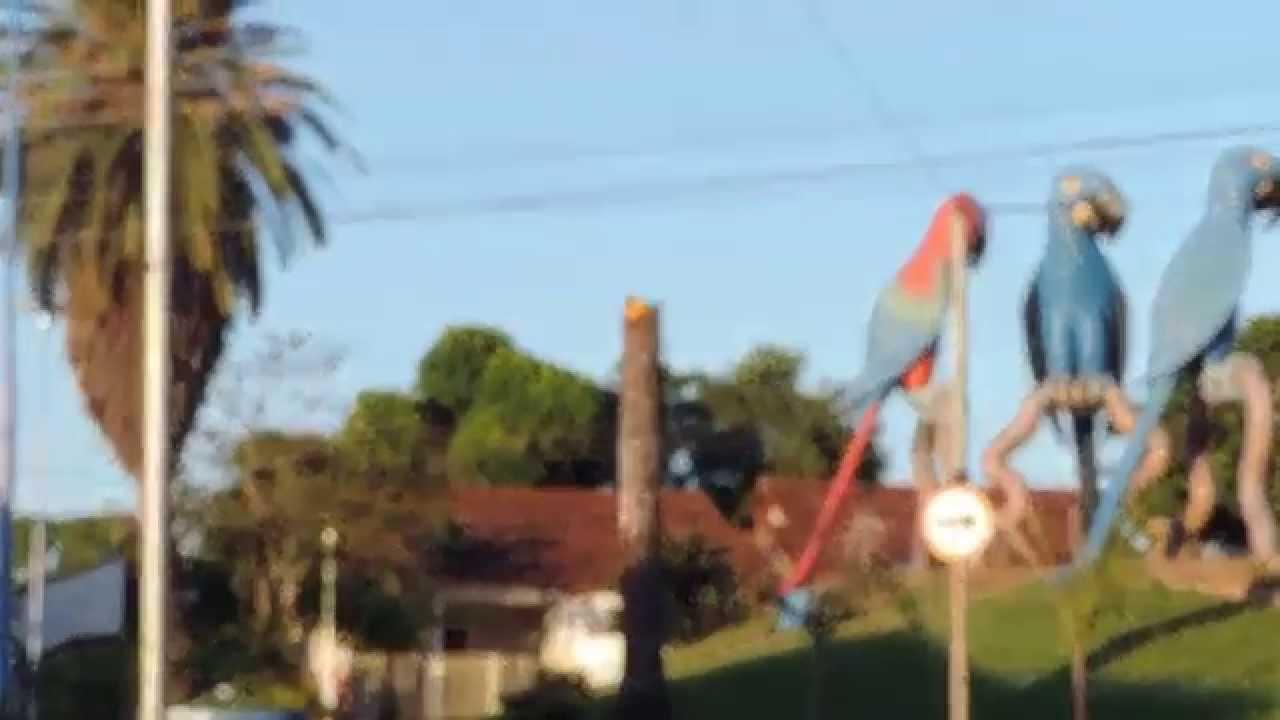 Praça das Araras - Campo Grande MS - YouTube 98ba9f28ffa6c