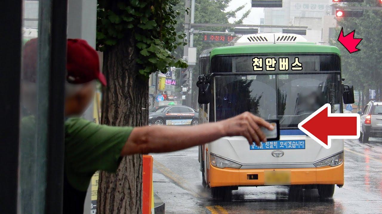 [공작소] 천안버스는 정말 손을 들어야만 태워줄까?