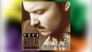 Pepe aguilar por el amor de siempre canciones
