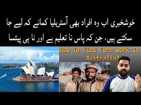 How To Find Farm Work In Australia ? - Albaraka Travel