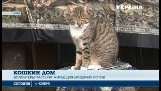 Киевский зоопарк приютил бродячих котов