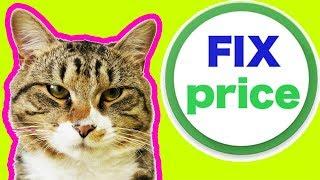 FIX PRICE РАСПАКОВКА ПОКУПОК | ОБЗОР ФИКС ПРАЙС ОТ КОТА ТИГРЫ | PET CAT