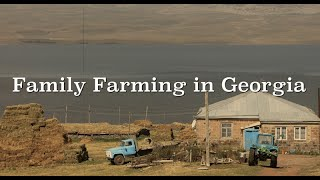 Family Farming in Georgia