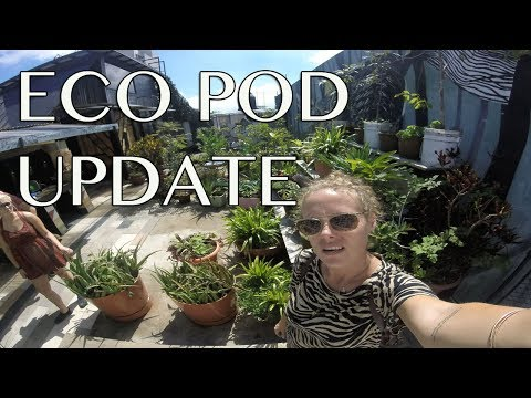 Guatemala City-Eco Pod Update
