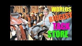 SADDLE SHOPPING! WORLDS BIGGEST STORE! Day 322 (11/20/17)