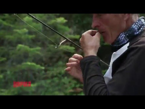 How To Find Stream Trout   Rapala Fishing Tips