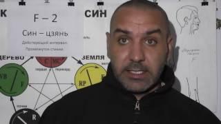 Женские и Мужские половые органы.