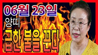 2020년 06월 23일 오늘의 운세 양띠 매상이 떨어져도 급한 불은 끄게 된다 수미산당 구슬보살  010-…