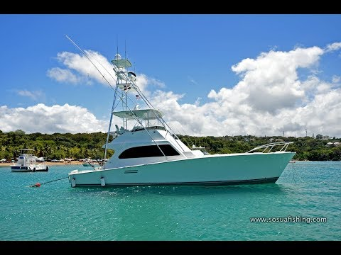 Sosua Luxury Yacht Rental