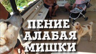 Крымские каникулы. Окуневка. Алабай Мишка