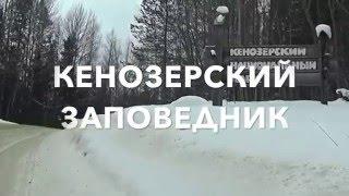 Кенозерье(О чем это видео: Кенозерский заповедник за 5 минут))), 2016-03-12T17:04:49.000Z)