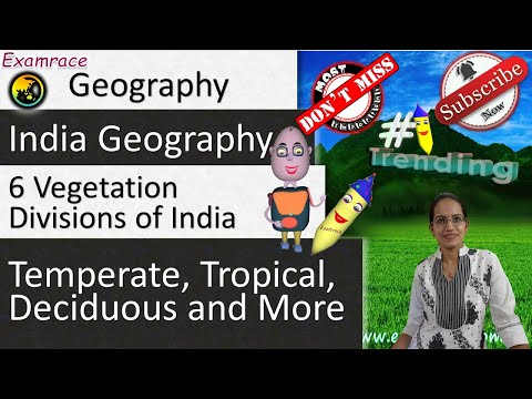 6 Vegetation Divisions of India - Geography of India