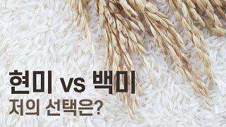 현미 vs 백미 : 저의 선택은?