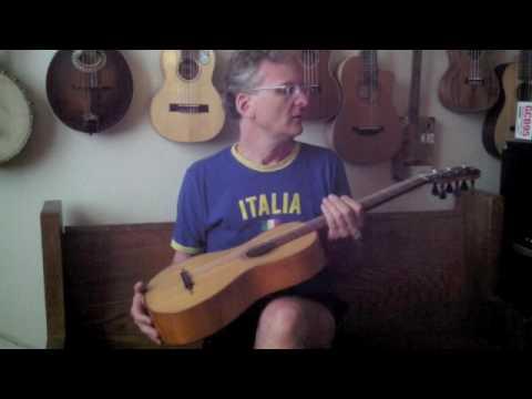 19th Century Guitar Pegheds