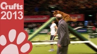 Agility - Crufts Singles Heat - Small, Medium and Large - Crufts 2013