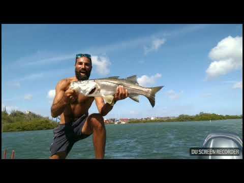 We Love Fishing Curacao