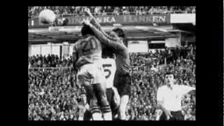 Brasil x Suécia - Final da Copa de 1958 - Completo