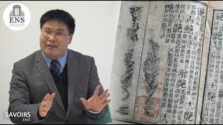A synchronic view of the chinese vocabulary - Yongwei Gao