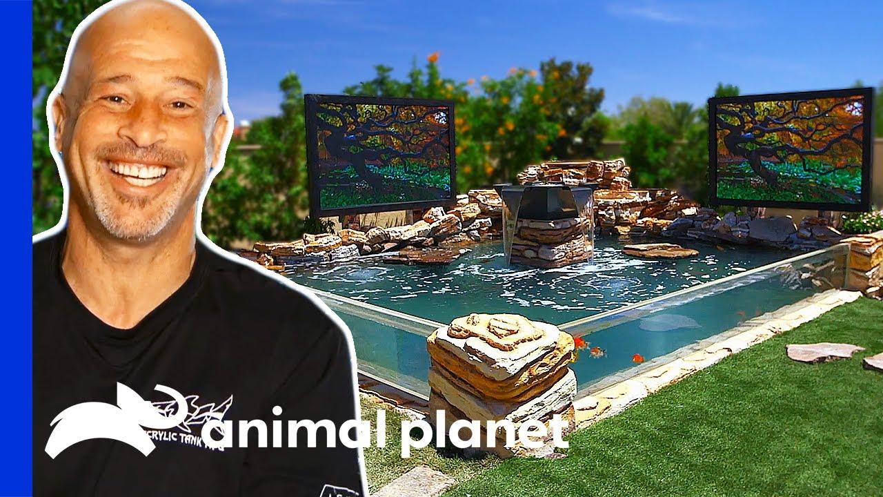 Download Brett Builds Massive Dream Pond in His Backyard   Tanked