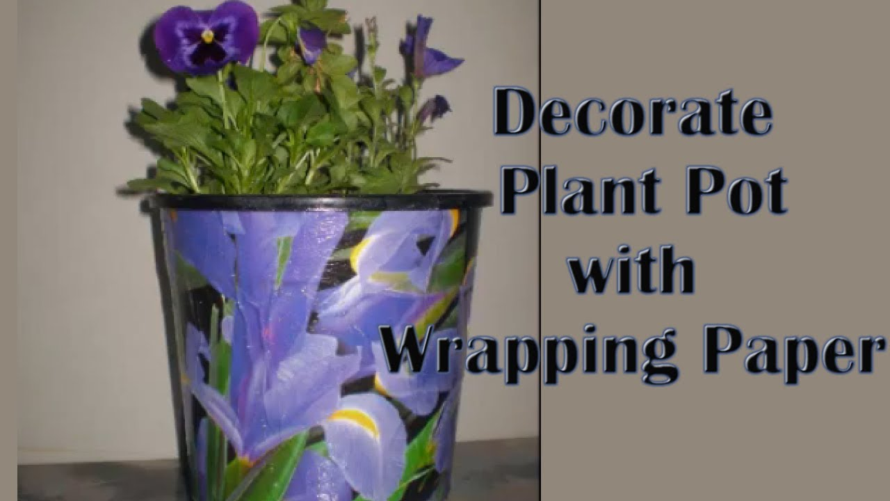 Plastic Plant Pot With Wring Paper