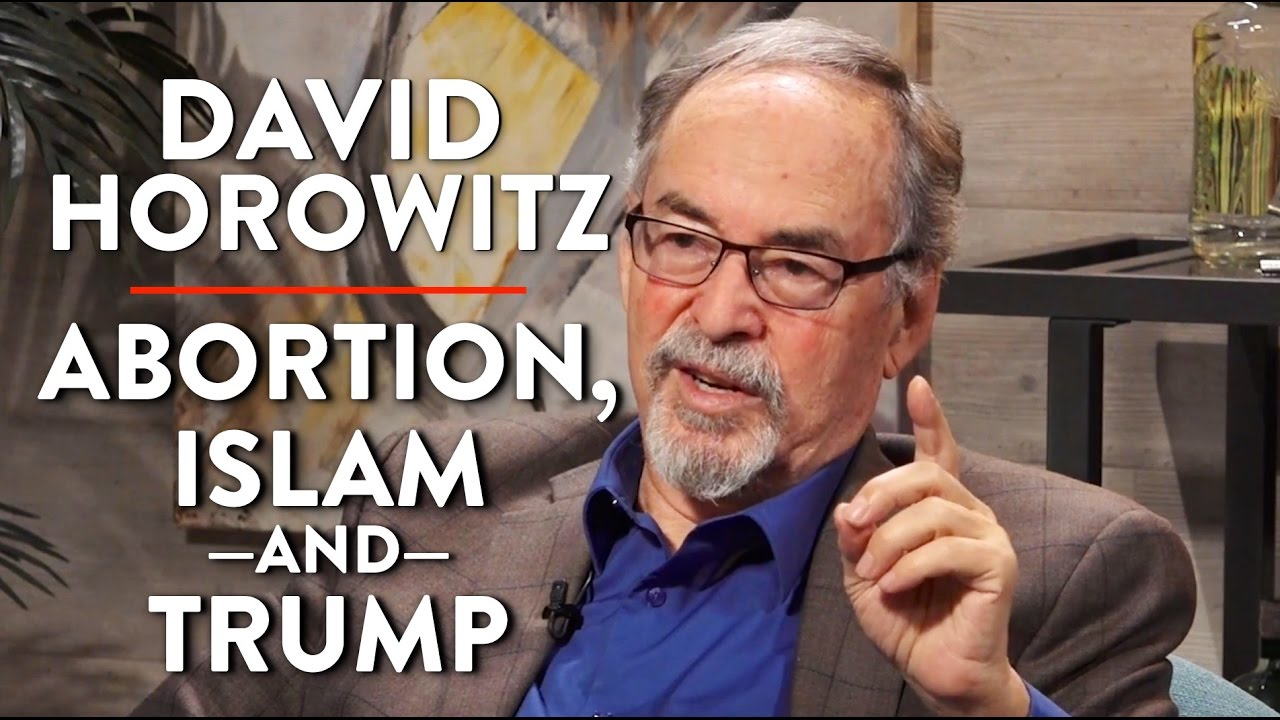 Image result for images of david horowitz