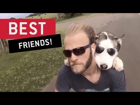 Top 10 Man's Best Friend Moments