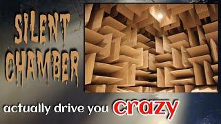 Can Silence Actually Drive You Crazy ???