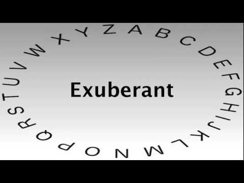 Delightful SAT Vocabulary Words And Definitions U2014 Exuberant