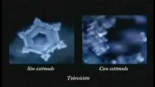 Los secretos del agua Masaru Emoto thumbnail