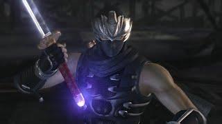 Ninja Gaiden 2 | TGBS