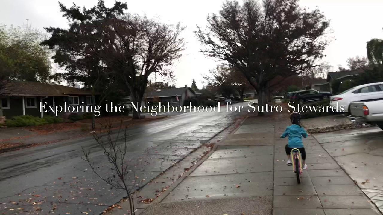 Exploring the Neighborhood