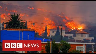 La Palma volcano engulfs village minutes after residents flee their homes - BBC News