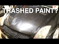 THE WORST PAINT I'VE EVER SEEN!!