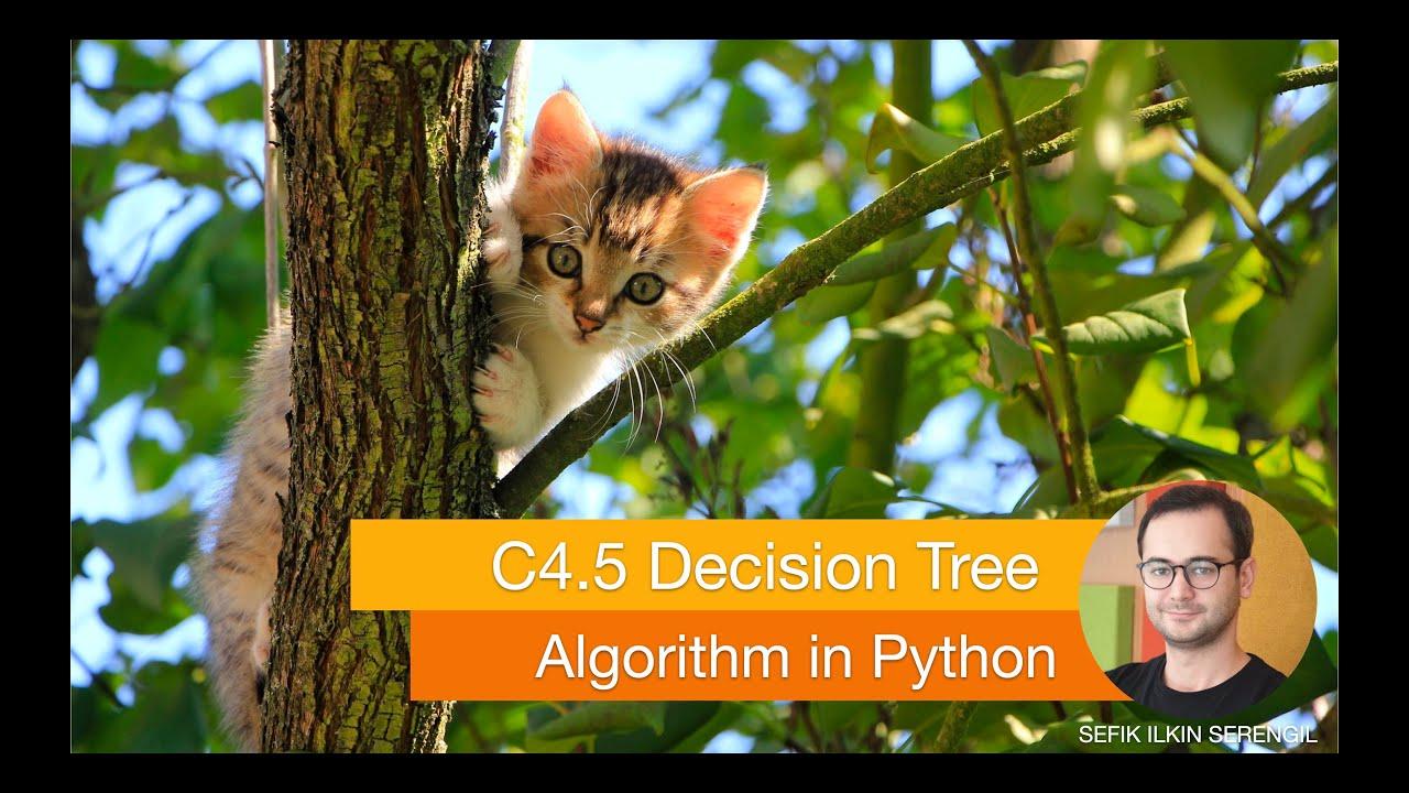 A Step By Step C4 5 Decision Tree Example - Sefik Ilkin Serengil