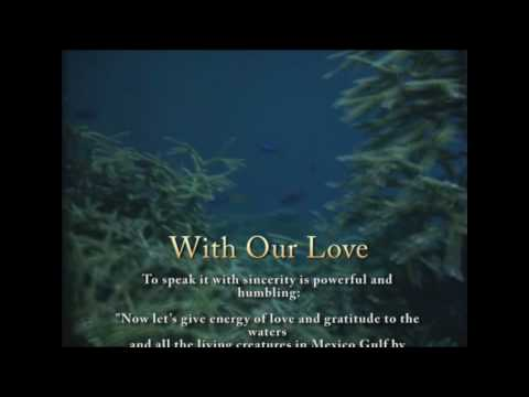 Help Heal The Gulf Of Mexico