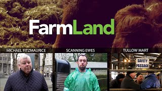 FARMLAND: 23rd January 2020
