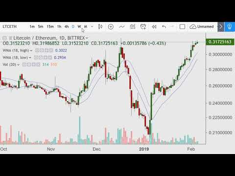 Crypto Day Morning {LTC, BTC And More} 2019.02.05